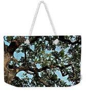 Oak Tree Three Weekender Tote Bag