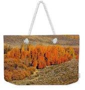 Oasis Of Beauty Weekender Tote Bag