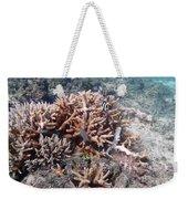 Ocean Fiji Weekender Tote Bag