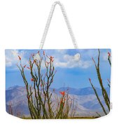 Ocotillo Cactus With Mountains And Sky Weekender Tote Bag