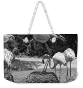 Odd Bird Out In Black And White Weekender Tote Bag