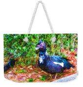 Odd Looking Duck In Swansboro Nc 2 Weekender Tote Bag