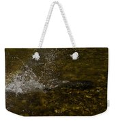 Of Fishes And Rainbows - Wild Salmon Run In The Creek Weekender Tote Bag