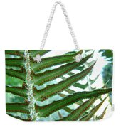 Office Art Ferns Green Forest Fern Giclee Prints Baslee Troutman Weekender Tote Bag