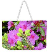Office Art Pine Conifer Pink Azalea Flowers 38 Azaleas Giclee Art Prints Baslee Troutman Weekender Tote Bag