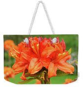 Office Art Prints Azaleas Botanical Landscape 11 Giclee Prints Baslee Troutman Weekender Tote Bag