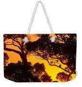 Ohia Trees At Sunset Weekender Tote Bag