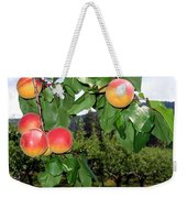 Okanagan Apricots Weekender Tote Bag by Will Borden