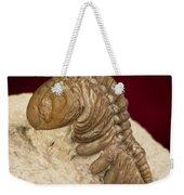 Oklahoma Trilobite. Weekender Tote Bag