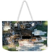 Old Barn Roof With Bird Weekender Tote Bag