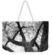 Old Cottonwood Tree Weekender Tote Bag