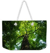 Old Growth Weekender Tote Bag