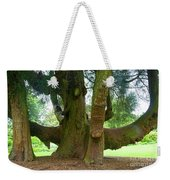 Old Huge Tree Weekender Tote Bag