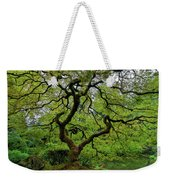 Old Japanese Maple Tree Weekender Tote Bag