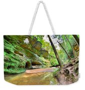 Old Man's Gorge Trail And Caves Hocking Hills Ohio Weekender Tote Bag