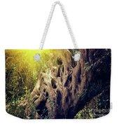 Old Sacred Olive Tree  Weekender Tote Bag