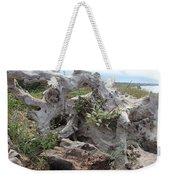 Old Stump At Gold Beach Oregon 4 Weekender Tote Bag