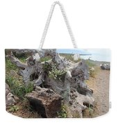Old Stump At Gold Beach Oregon 5 Weekender Tote Bag