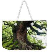 Old Tree In Kyoto Weekender Tote Bag by Carol Groenen