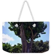 Old Tree In Palermo Weekender Tote Bag