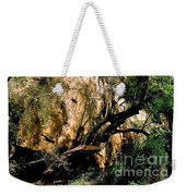Old Tree Weekender Tote Bag