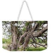 Old Weathered Tree Weekender Tote Bag