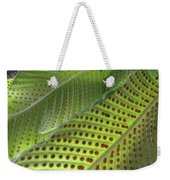 On The Dotted Lines Weekender Tote Bag