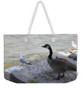 On The Lakefront Weekender Tote Bag
