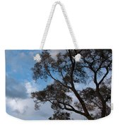 On Winds Of Evening Weekender Tote Bag