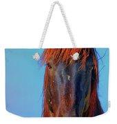 Onaqui Wild Stallion Portrait Weekender Tote Bag
