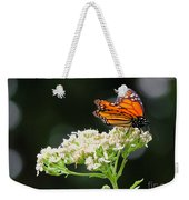 Once Upon A Butterfly 005 Weekender Tote Bag