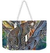 One Little Cheetah Sitting In A Tree Weekender Tote Bag