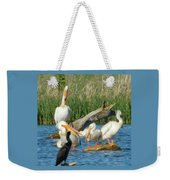 One Sassy Pelican And Friends, West Central Minnesota Weekender Tote Bag