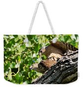 Cooper's Hawks Mating Weekender Tote Bag
