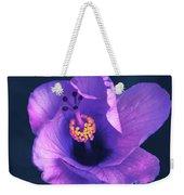 Opening Purple Hibiscus  Weekender Tote Bag