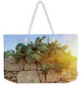 Opuntia Cactus In The Sunset Weekender Tote Bag