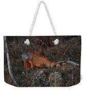 Oranage Iguana Weekender Tote Bag
