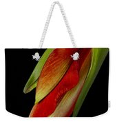 Orange Amaryllis Hippeastrum In The Beginning 2-21-10 Weekender Tote Bag