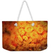 Orange Anemones Weekender Tote Bag