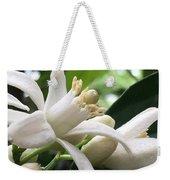 Orange Blossoms #1 Weekender Tote Bag
