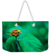 Orange Flower Iv Weekender Tote Bag