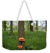 Orange Fungi On A Tree Weekender Tote Bag