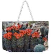 Orange Hedgehog Patch  Weekender Tote Bag
