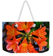 Orange Trumpet Flowers At Pilgrim Place In Claremont-california Weekender Tote Bag