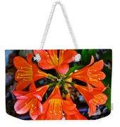 Orange Trumpet Flowers At Pilgrim Place In Claremont-california Weekender Tote Bag