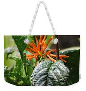 Orange Plants Weekender Tote Bag