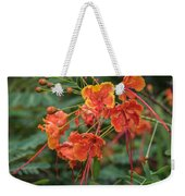 Orange Poinciana Tree Weekender Tote Bag