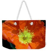 Orange Pop Photograph Weekender Tote Bag