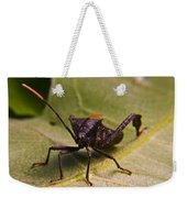 Orange Tipped Antennae Weekender Tote Bag