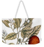 Orange Tree, 1735 Weekender Tote Bag